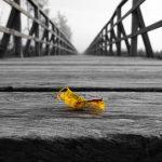 ■不幸自慢は不幸を引き寄せる?| 不幸はチャンスだった!